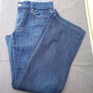 Gap 1969 Long & Lean Flare Jeans